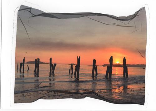Sunrise Plyons website